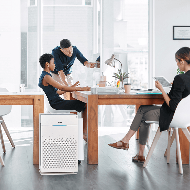 purificateur d'air Winix Zero Pro bureau