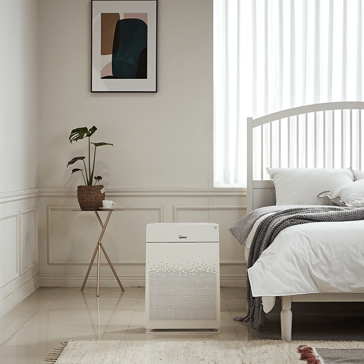 purificateur d'air ZERO Pro chambre