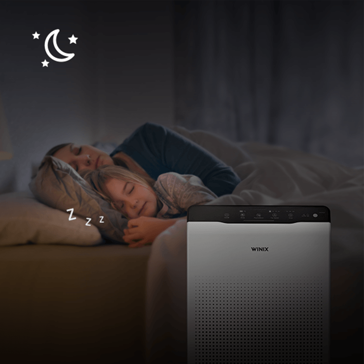 Air purifier sleep mode